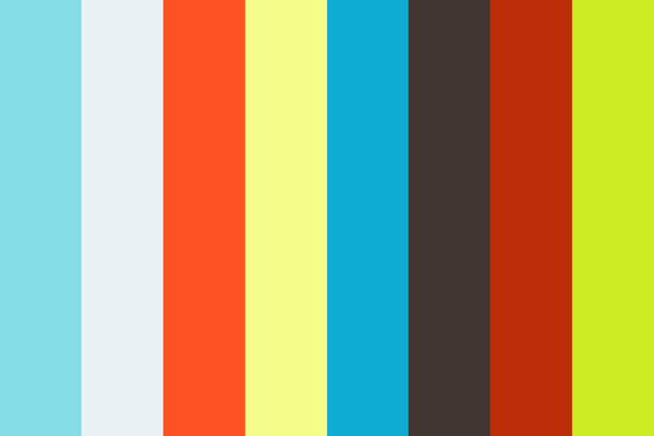 Highlights de Praia da Tartaruga - Carolina & Michel