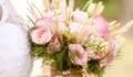 Bouquet por Susana Araújo de Foto por Adriana Oliveira