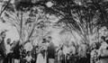 Casamento de Ludmille & Marcos