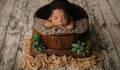 Bebê de Ensaio Newborn