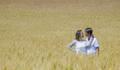 O amor está no ar... de Débora e Cláudio