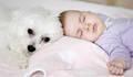 Bebês com Pets de