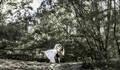 Pré-Wedding de Michele+Haurisson