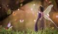Fairy Tale de para nossos pequenos que cresceram