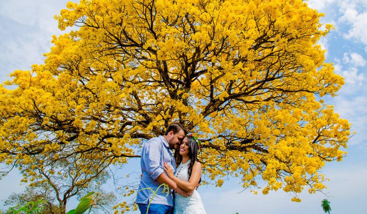 Pré - Casamento de Jeanne e Frederico