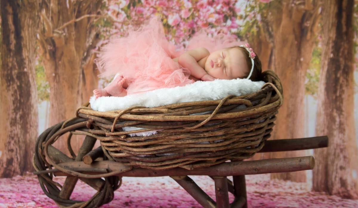 Newborn de Sofia, 13 dias