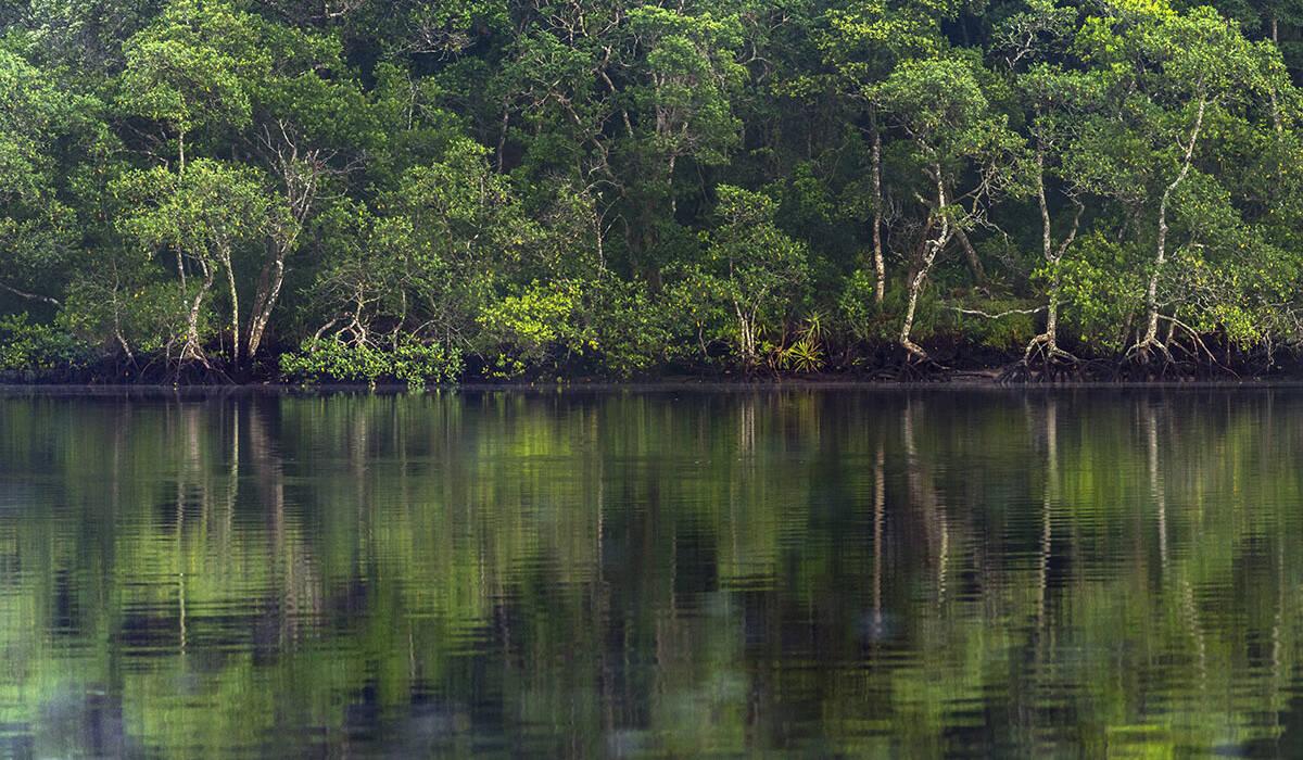 Lugares do Brasil de Gigante pela própria natureza