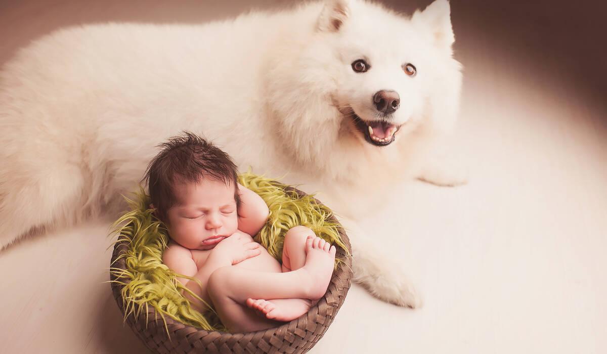 Newborn de Ensaio Ben