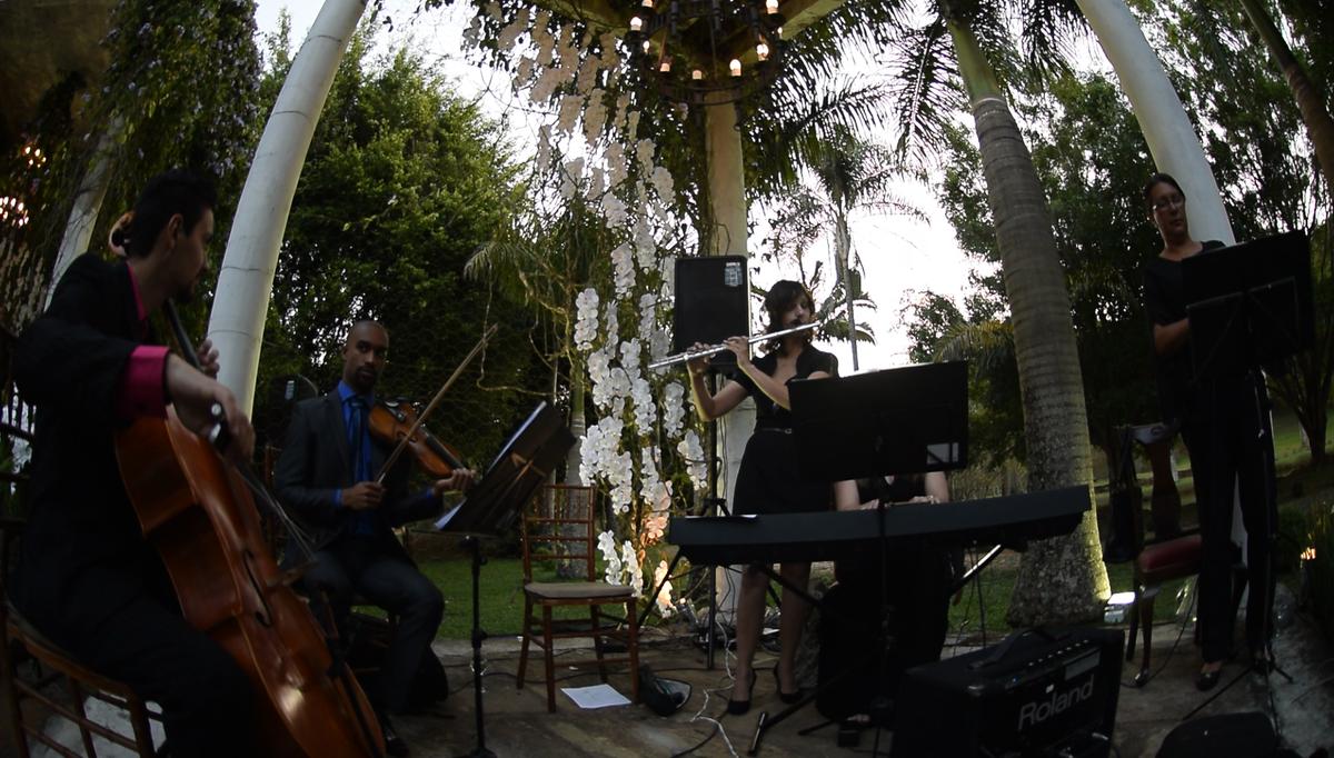 Imagem capa - Músicas para Casamento - La Vie En Rose por Viegas Eventos