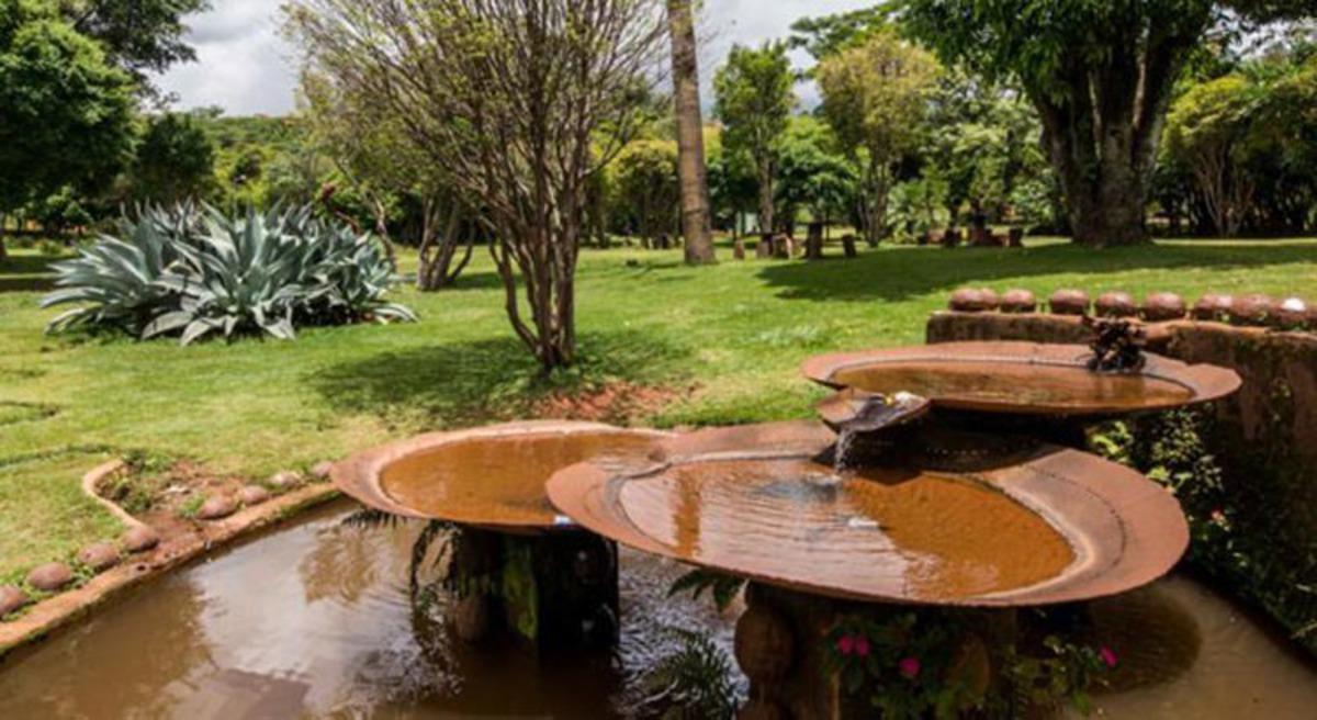 local para ensaio de casamento, parque das águas, barreiro, ensaio casal, casamento