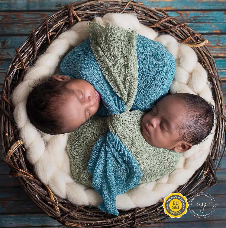 Imagem capa - E agora? São gêmeos! por Angela Teresa Perim Carreiro