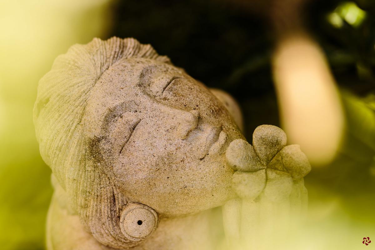 Imagem capa - Feliz Ano Branco! por Kelly Schmidt - Fotografia feita de amor!
