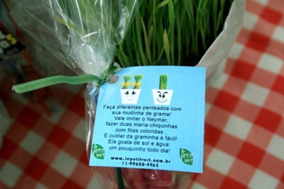 lembrancinha infantil ecologica ideias