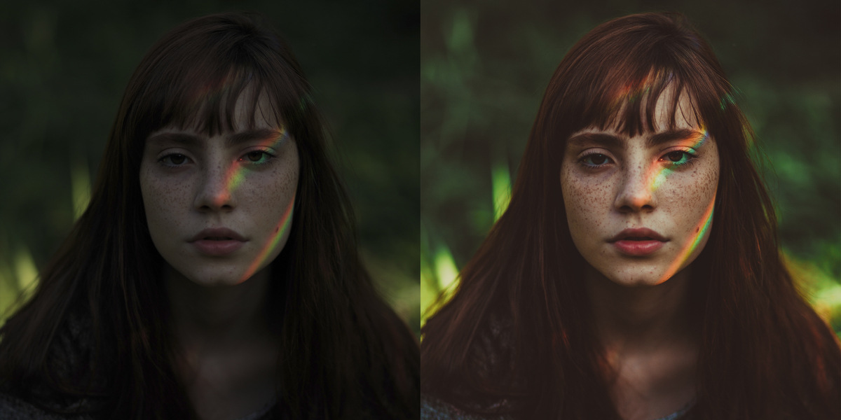 ANTES / DEPOIS - 08 - COLORFUL FOX