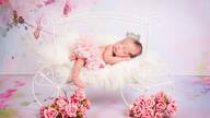 Newborn, session newborn, Fotografia Newborn Campinas de