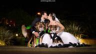 Casamento de B & G