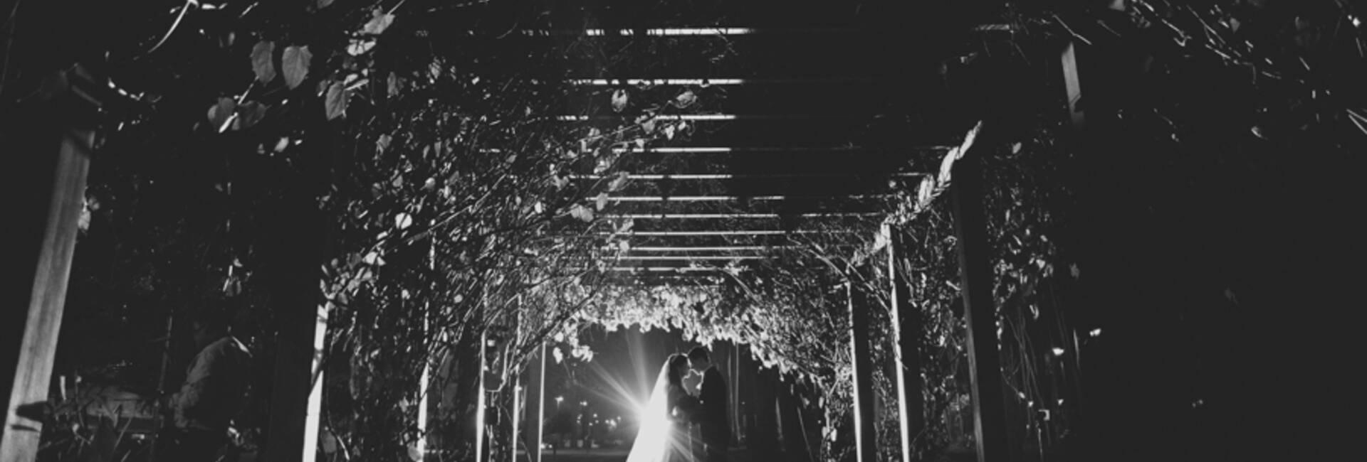 casamentos de Aline e Chris