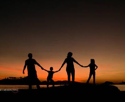 Família Salles