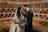 Fotografia de Casamento de Casamento Madero Eventos   Americana SP