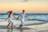de Ensaio Pré Wedding na praia