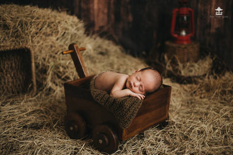 Newborn de Davi