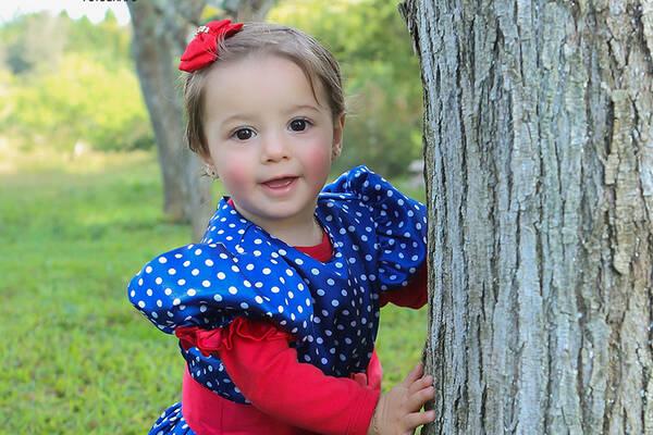 Aniversário Infantil de Lavínia - 1 aninho