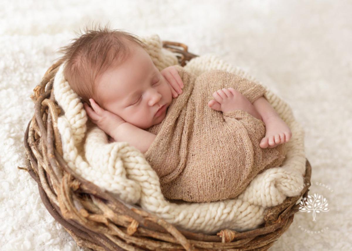 ensaio-newborn-porto alegre-cestinho
