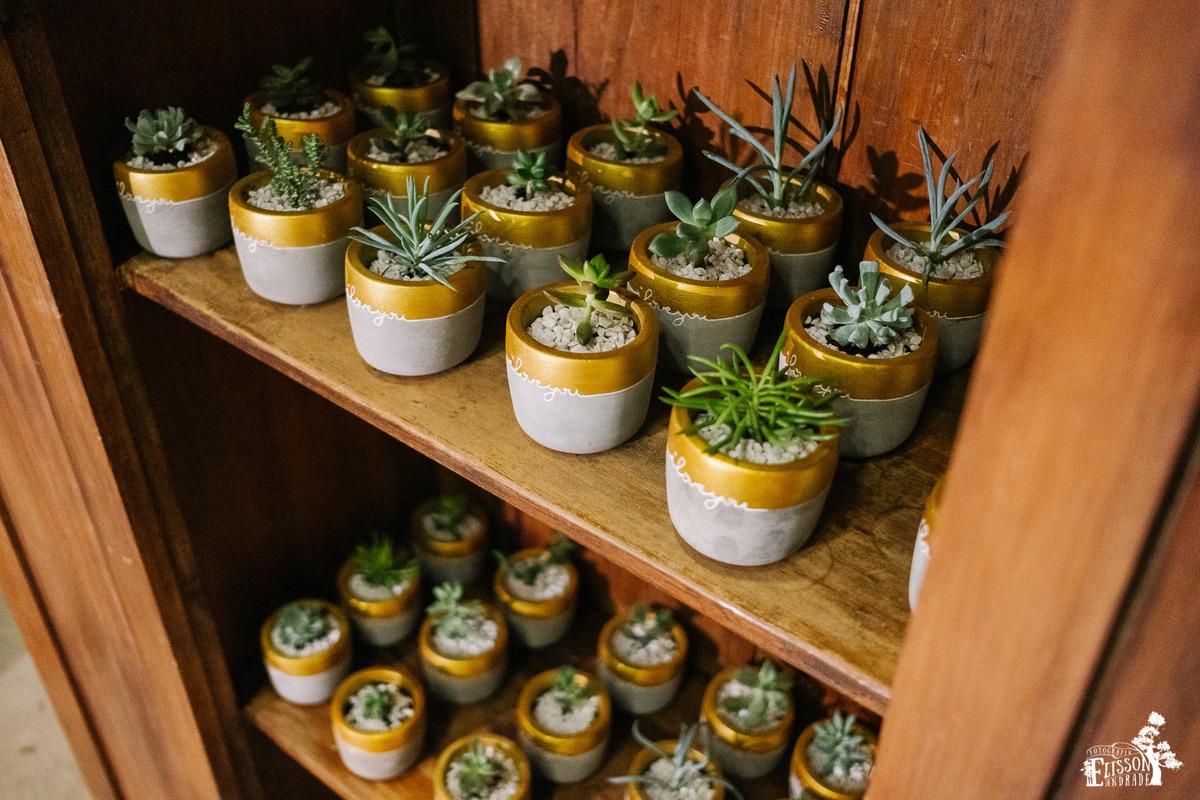 Lembranças para casamento DIY, vazo de cimento com plantinhas verdes e pedras de aquário brancas.