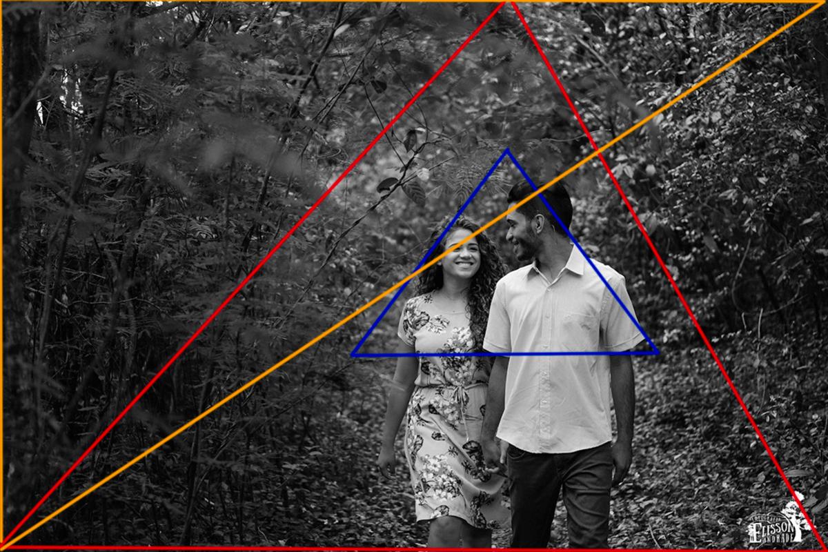 composição na fotografia, formas geométricas e gestalt
