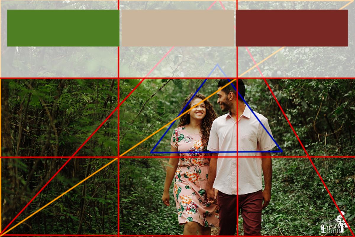 foto no campo com 4 elementos de composição da fotografia