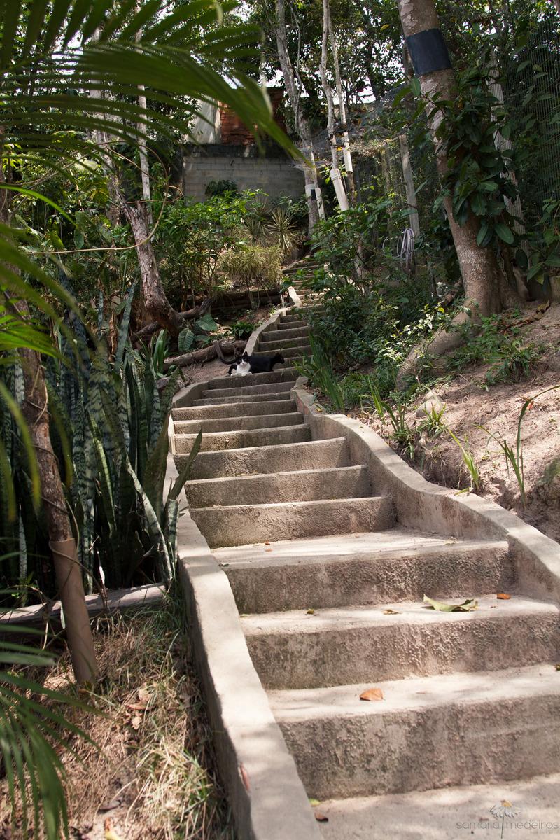 Escadaria do gatil em Niterói, em meio às arvores e grama.