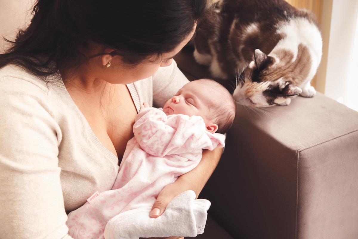 mãe com a bebê em seu colo, com a gatinha da família cheirando a cabecinha da bebê.