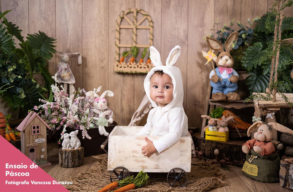 ensaio de pascoa vanessa durazzo fotografa newborn osasco