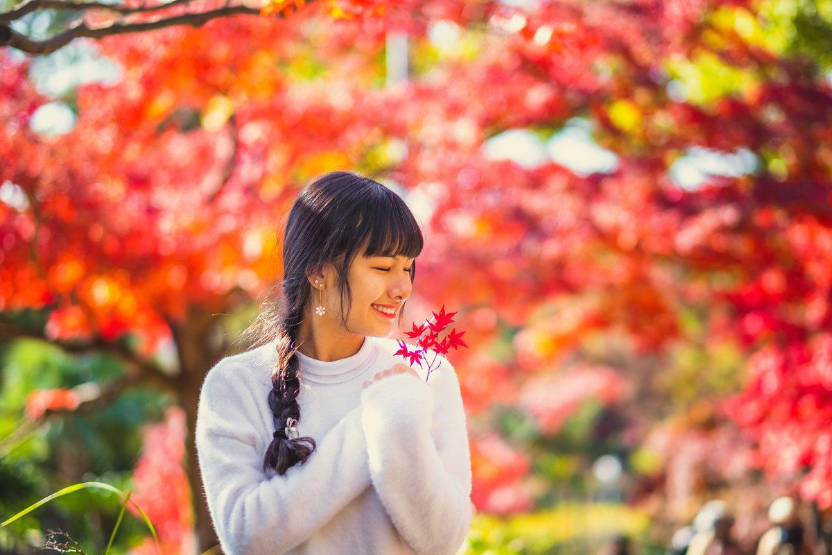 fotos no outono japao, debutante no japao, fotografo em aichi, ensaio com momiji, okazaki,