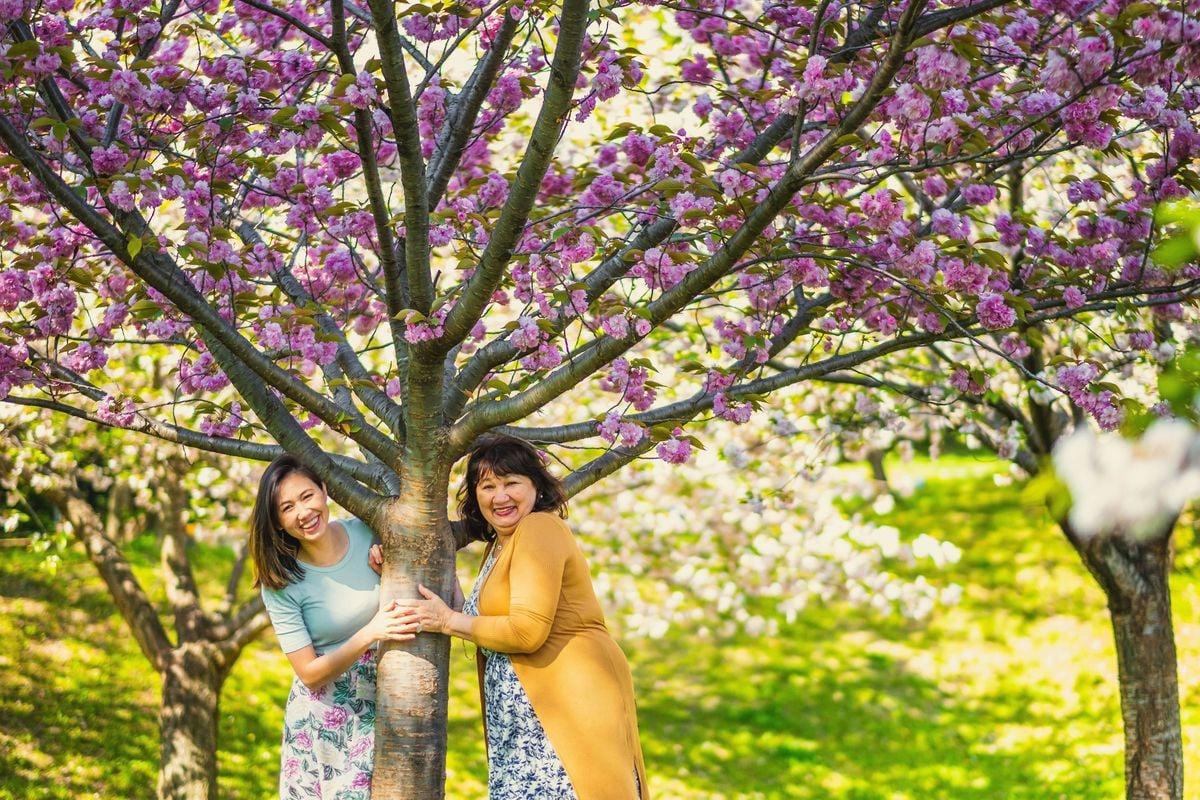 ensaio fotografico no Japão, ensaio familiar no Japão, fotografo no Japão, fotografo brasileiro no Japão, fotografo brasileiro em aichi