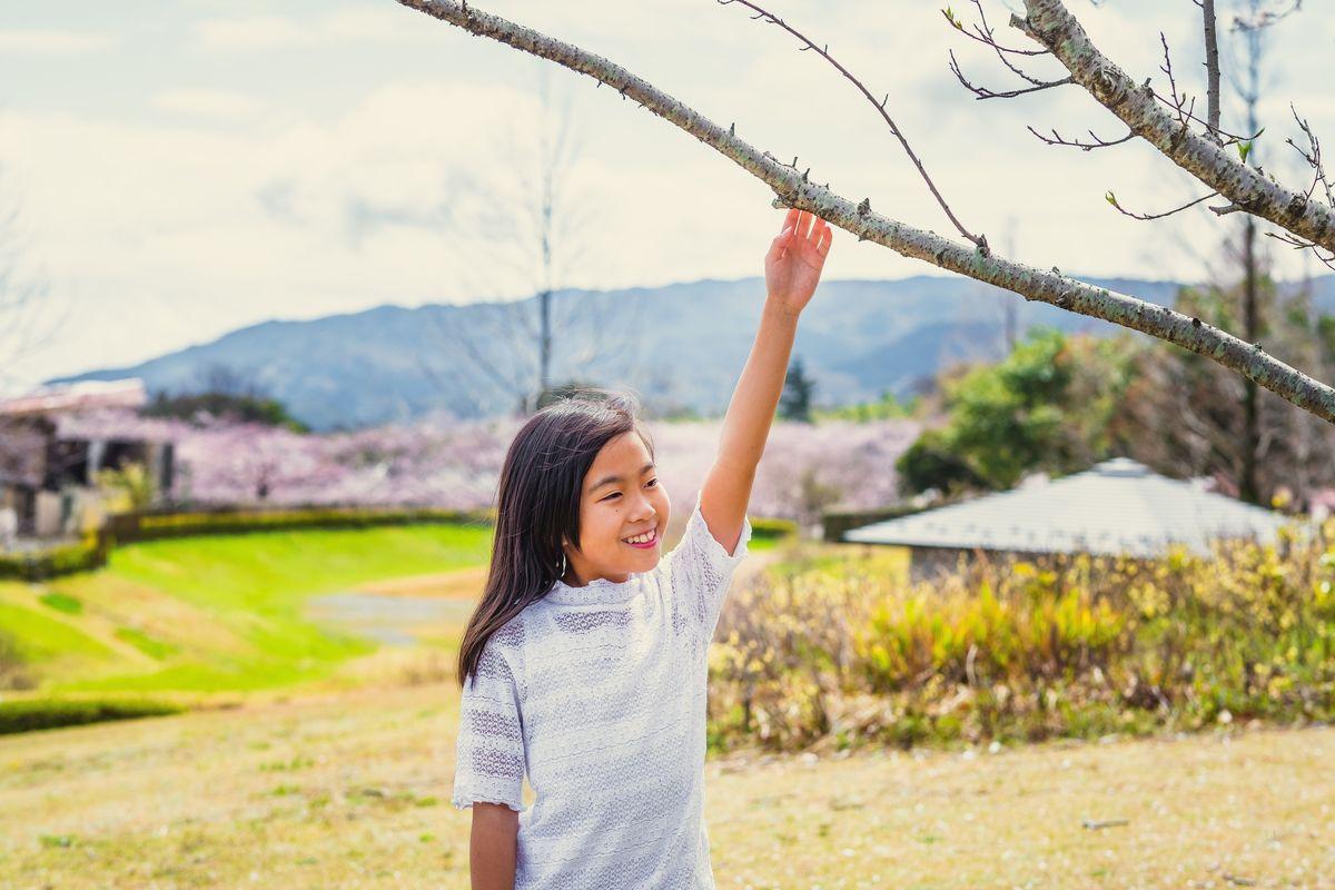 ensaio infantil no Japão, ensaio familiar no Japão, ensaio em Gifu, ensaio em Osaka, fotografo no Japão