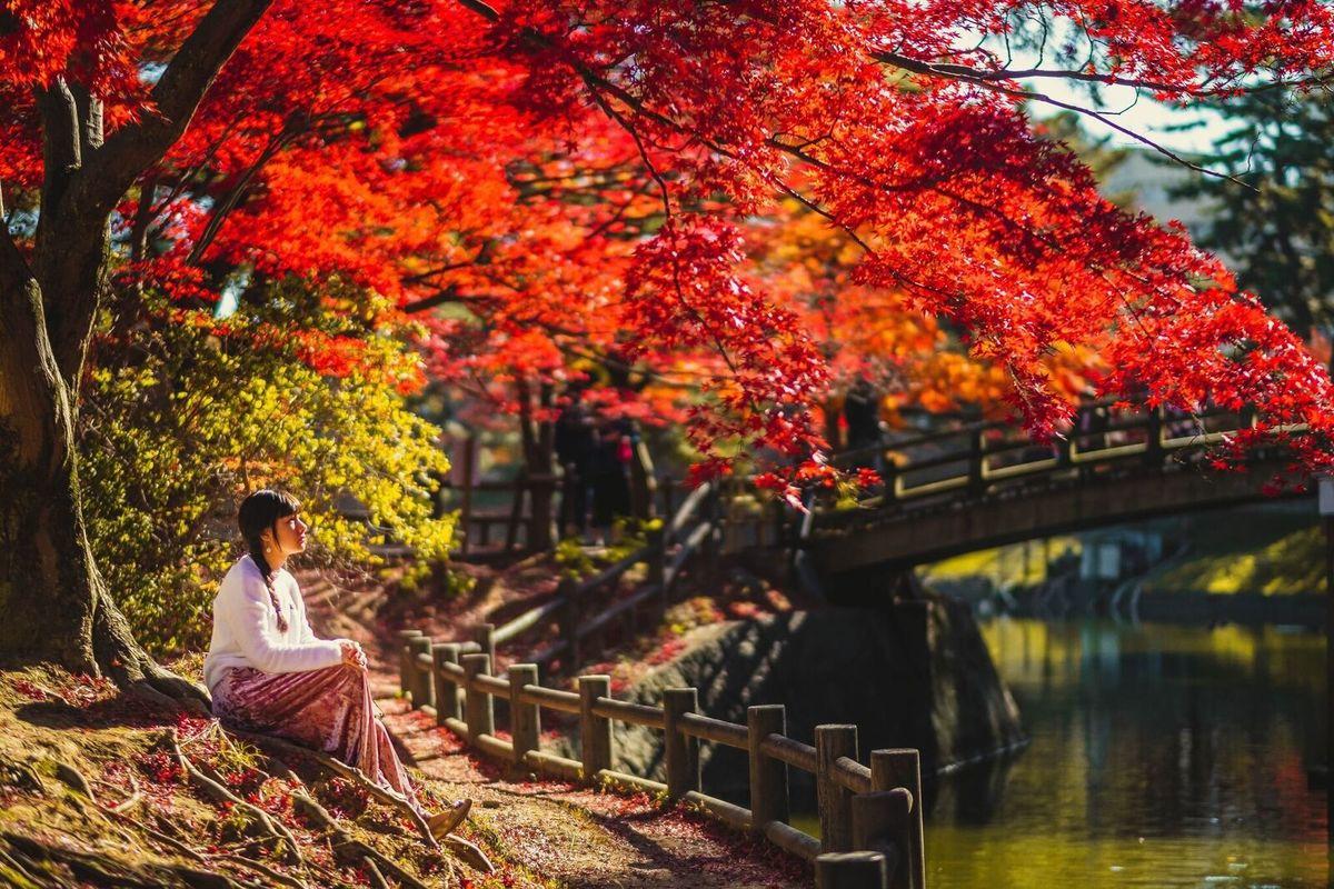 ensaio debutante no Japão, fotografo no japao, fotografo brasileiro no japao, ensaio momiji, ensaio em aichi