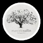 Marcelo Vallin