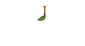 Estúdio Jotta PhotoPro