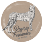 Rogério Farias Fernandes